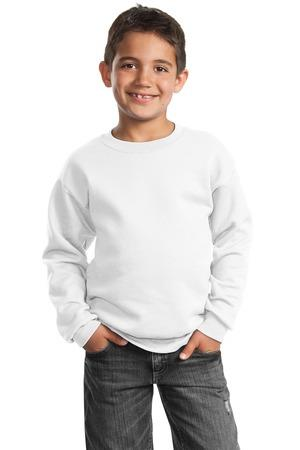 Port and Company - Youth Crewneck Sweatshirt.PC90Y